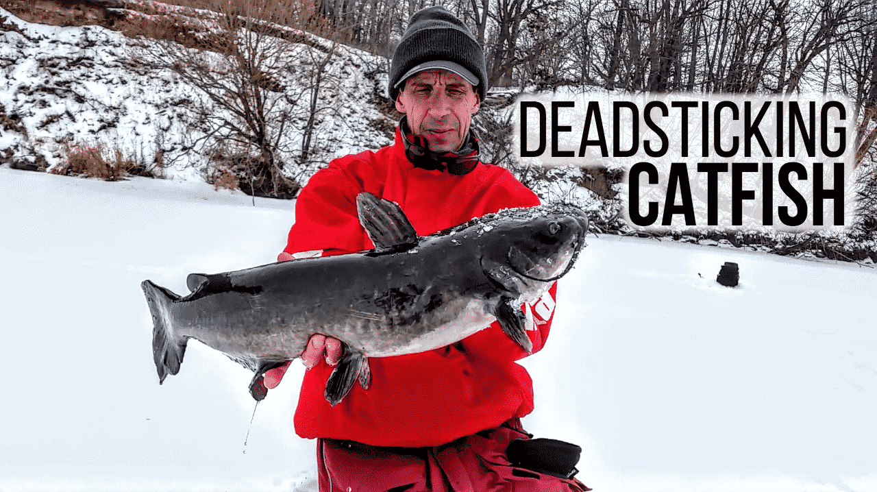 Deadsticking catfish on ice for Ice fishing for catfish