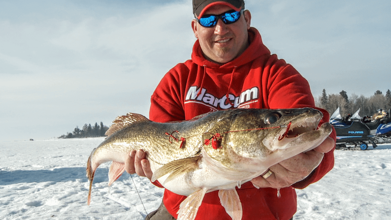 Walleye Tip Ups