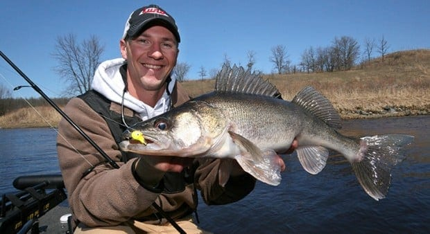 Muddy Water River Walleyes