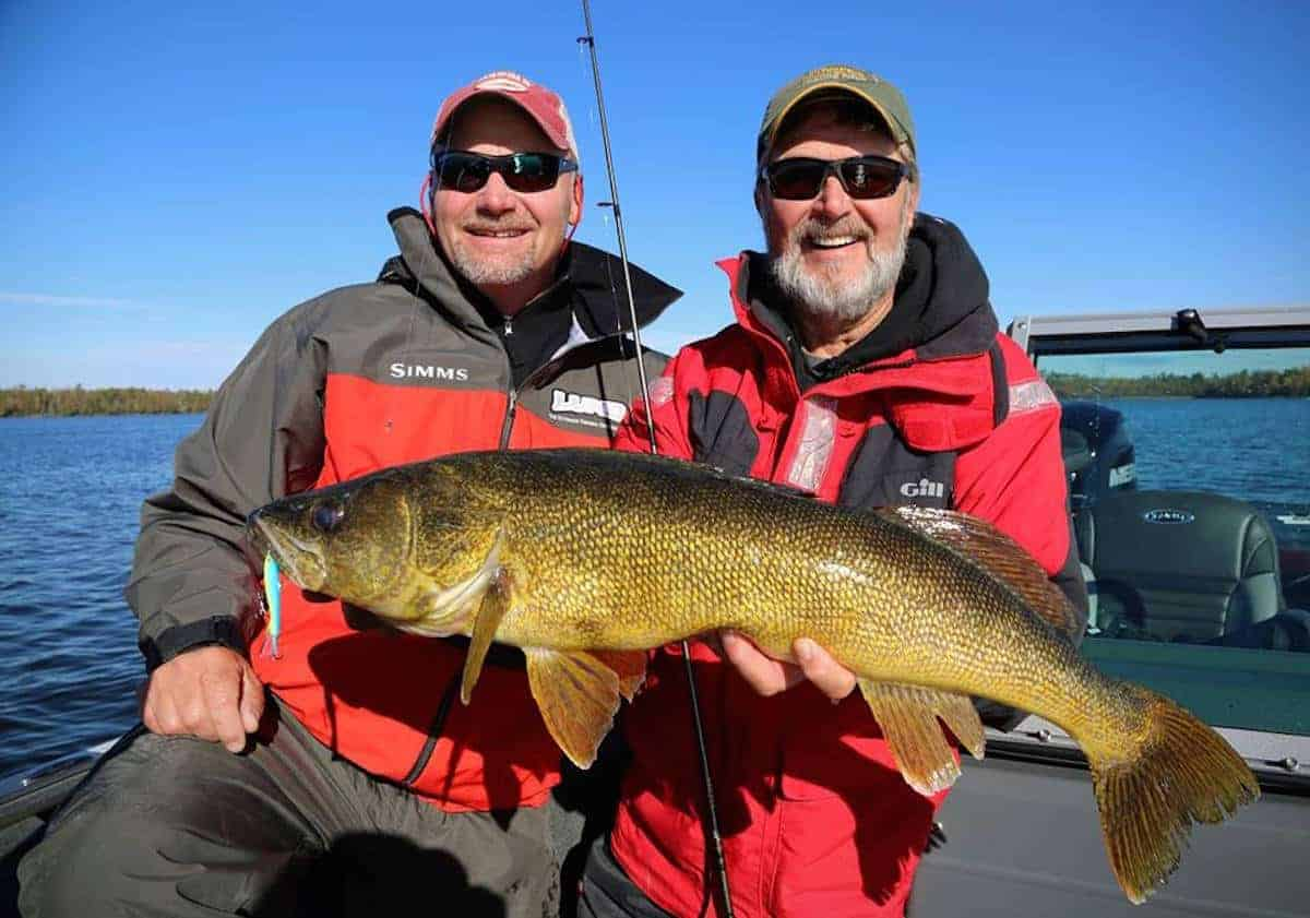 Walleye Lakes with Trophy Fish and Good Numbers
