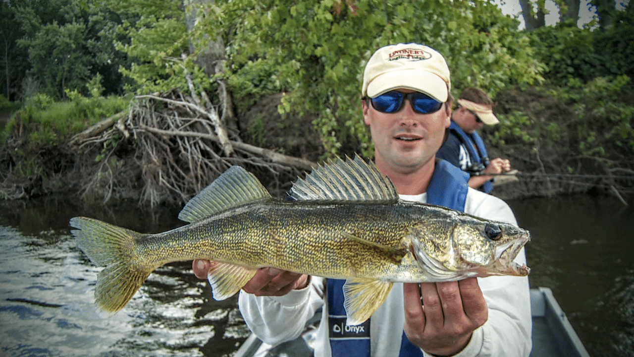 River Walleye - Jeremy Smith