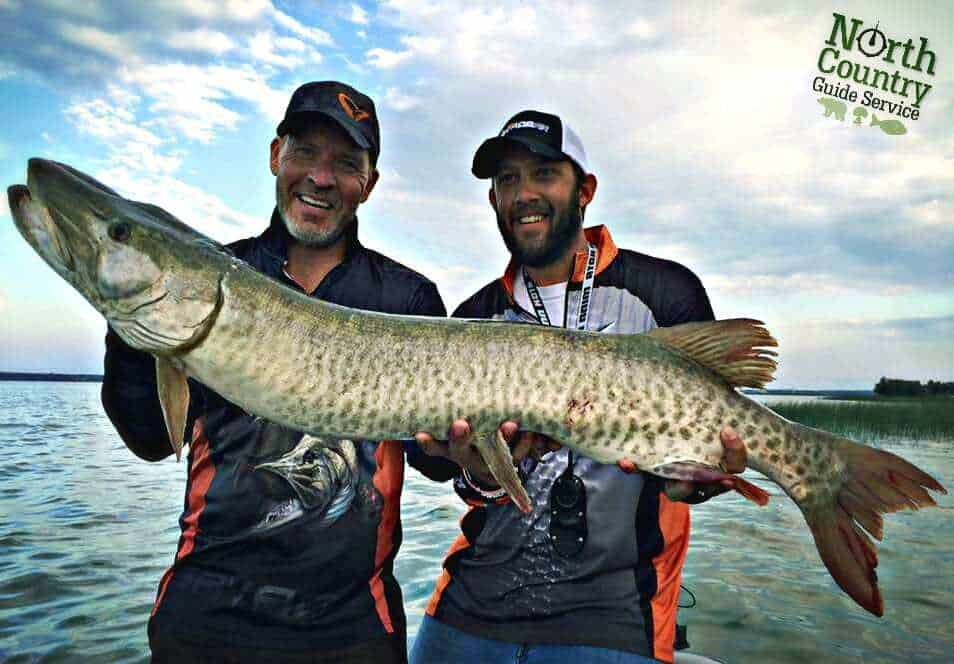 Musky from North Country Guide Service