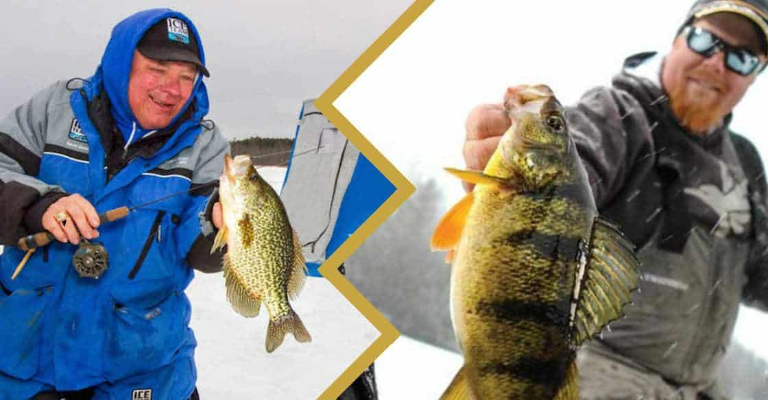 Ice Fishing Line Panfish