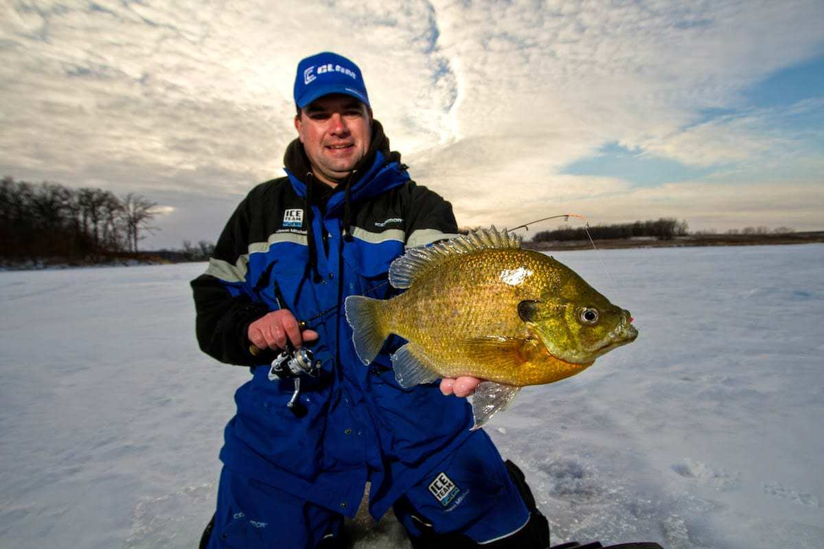 Ask the pros what is the best line for panfish through for Ice fishing bluegill