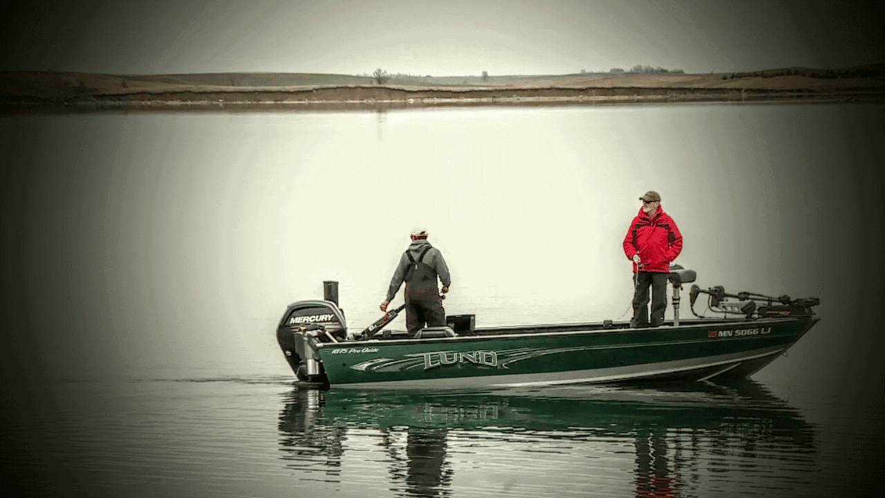 Your Outboard Might Actually Be Attracting Fish