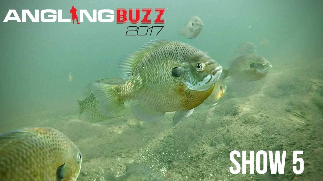 2017 AnglingBuzz TV Show 5