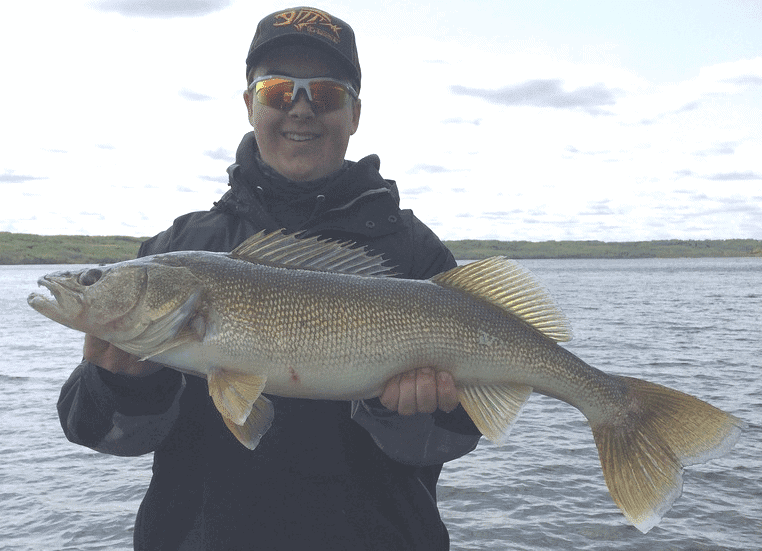 LAKE OF THE PRAIRIES Walleye
