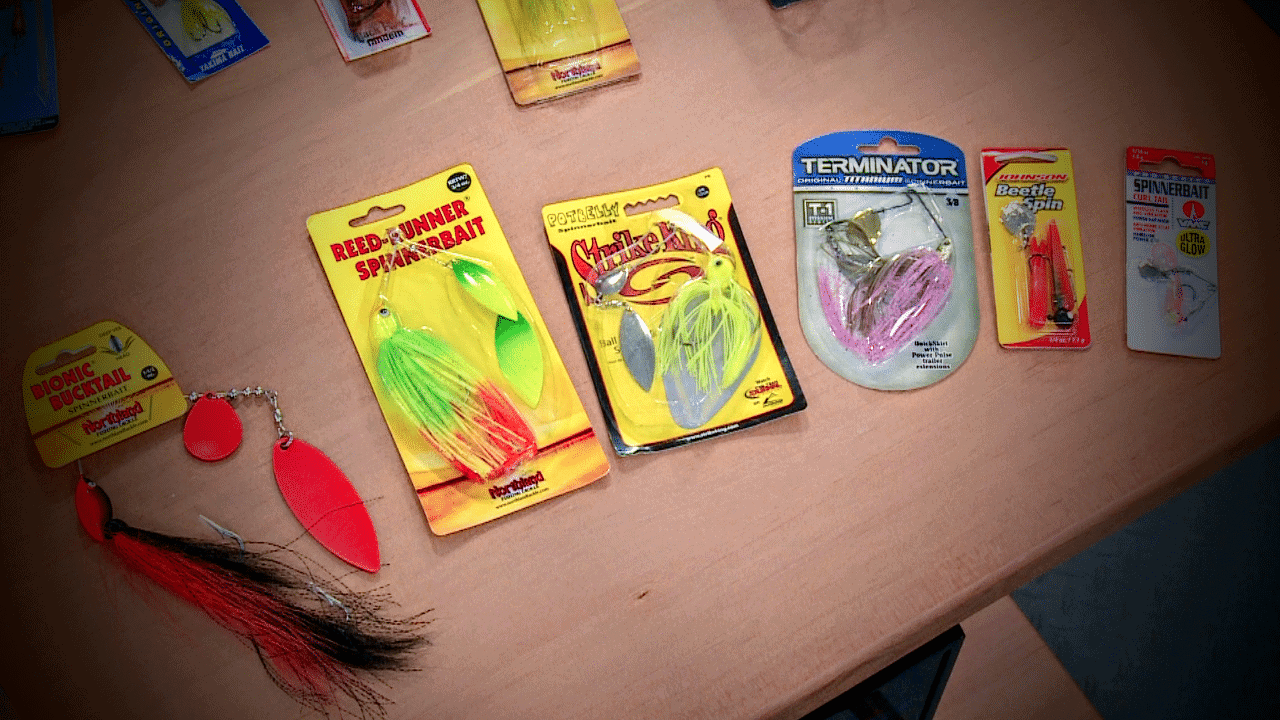Top Search Bait Options for Finding Spring Fish