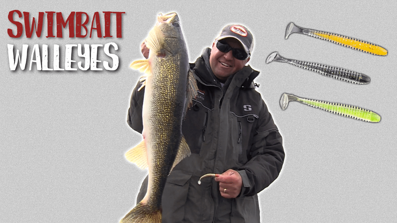 Swimbait Walleyes
