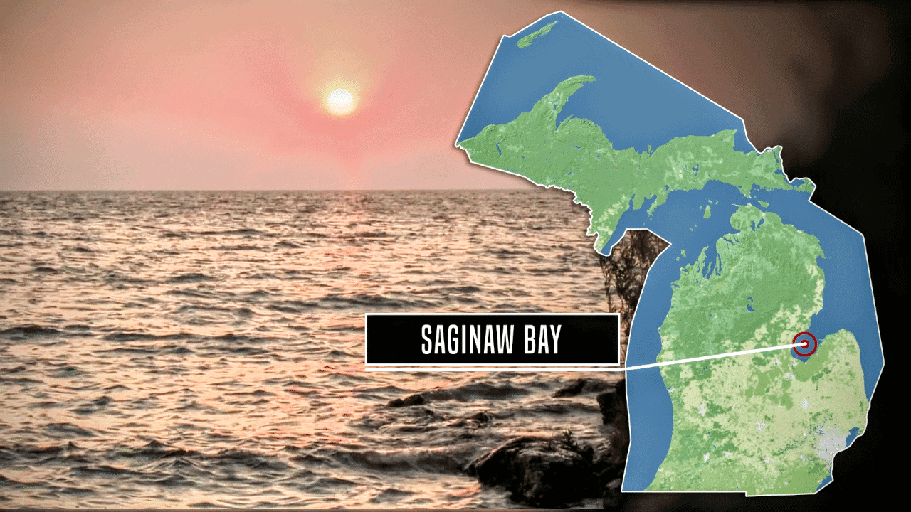 Saginaw Bay MI