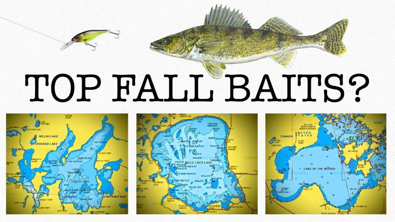 Top Fall Walleye Baits