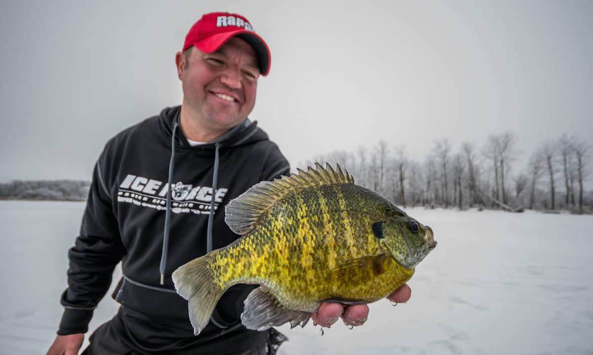 Bluegill Ice Fishing