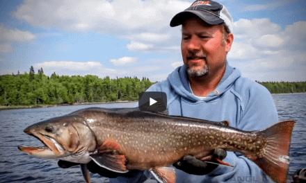 Nipigon River Brook Trout Fishing Adventure