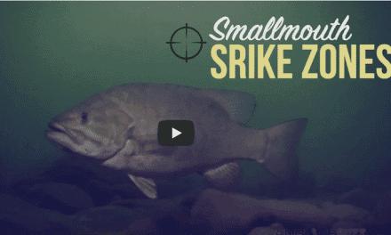 Smallmouth Strike Zone Success