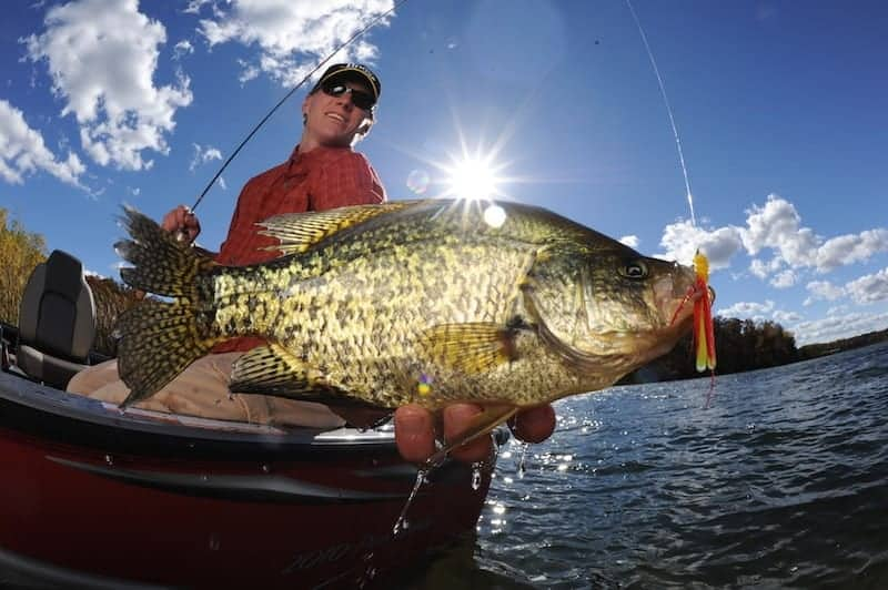 Countdown to Suspended Crappies in Summer