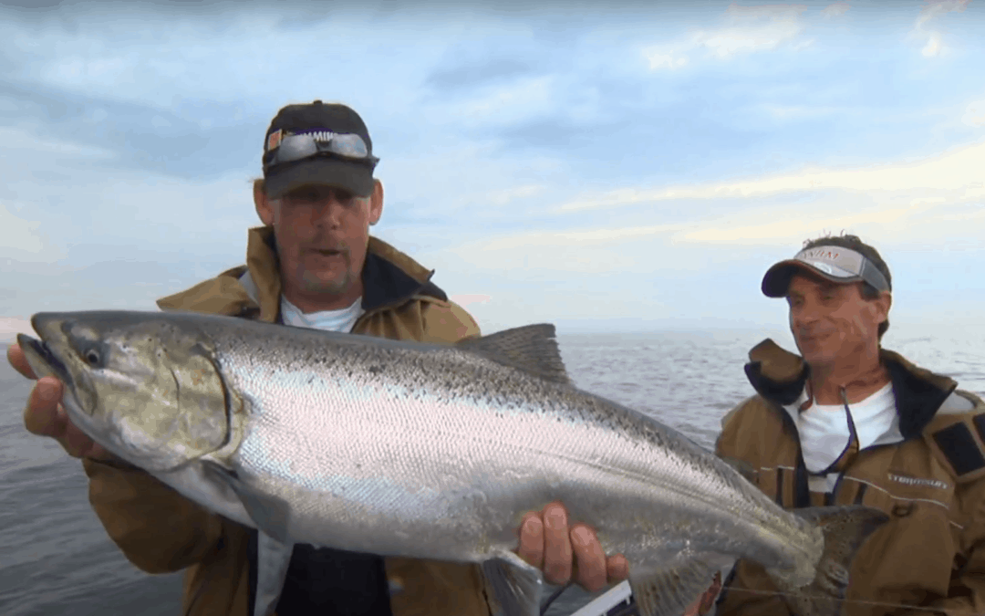 Chinook Salmon Near Harbors and River Mouths