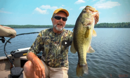 Crankbaiting Small Lakes for Big Largemouth Bass