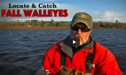 Locate and Catch Big Walleyes in Fall