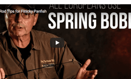 Spring Bobbers vs. Soft  Rod Tips for Finicky Panfish