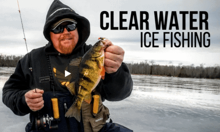 Why Realistic Baits Trigger Fussy Panfish into Biting