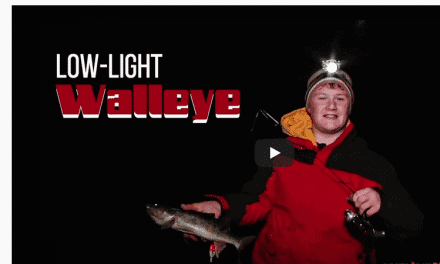 Catching Low-Light Walleyes at First Ice