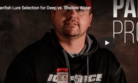 Panfish Lure Selection for Deep vs. Shallow Water
