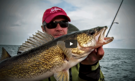 Match Baits and Retrieves to Walleye Aggressiveness