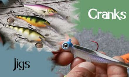 Crankbaits vs Jigs for Spring Walleyes