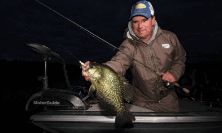 Today's Panfish Trends