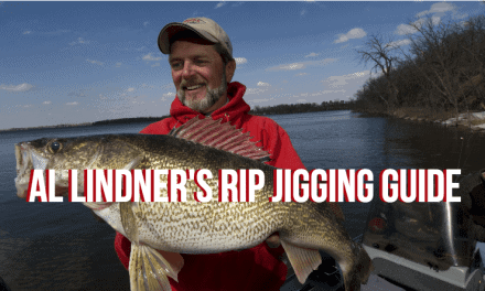 3 Ways to Trigger Aggressive Walleye Strikes in Summer