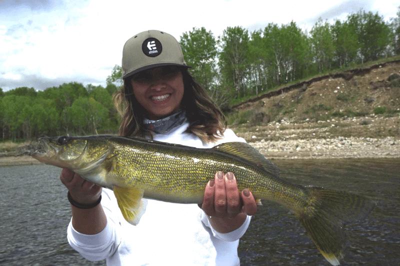 Manitoba Hot Bite – Lake of the Prairies Walleye Fishing