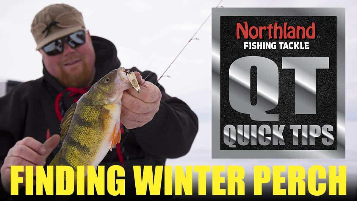 Strategies for Finding Wintertime Perch