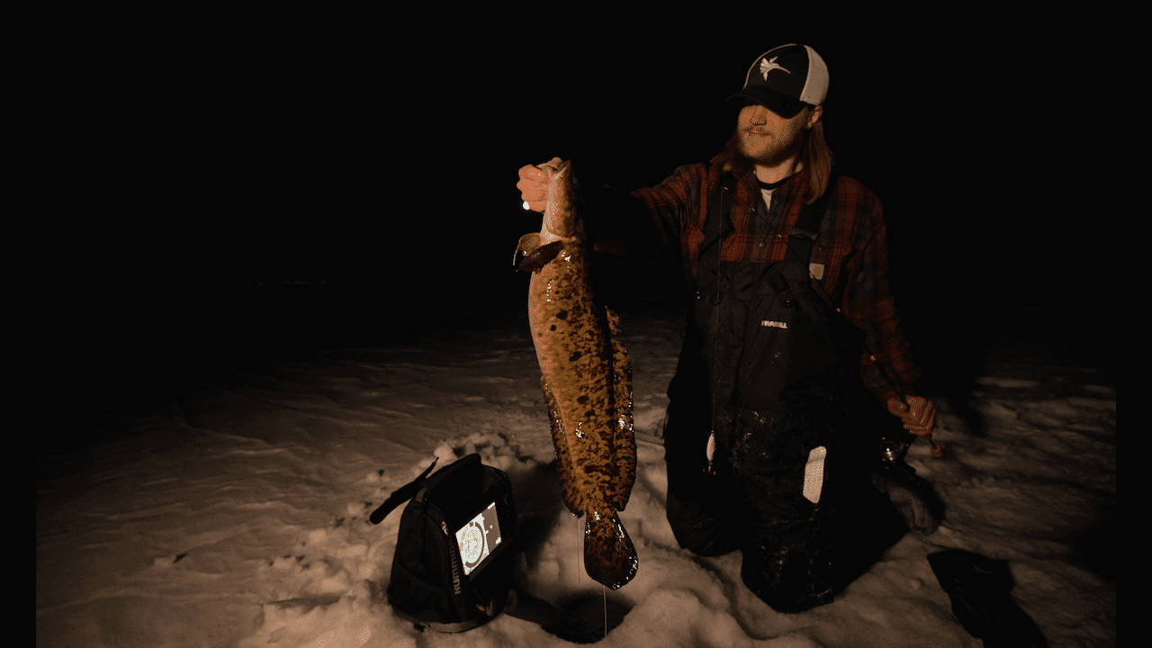 Minnesota Burbot (Update) – Hays Baldwin