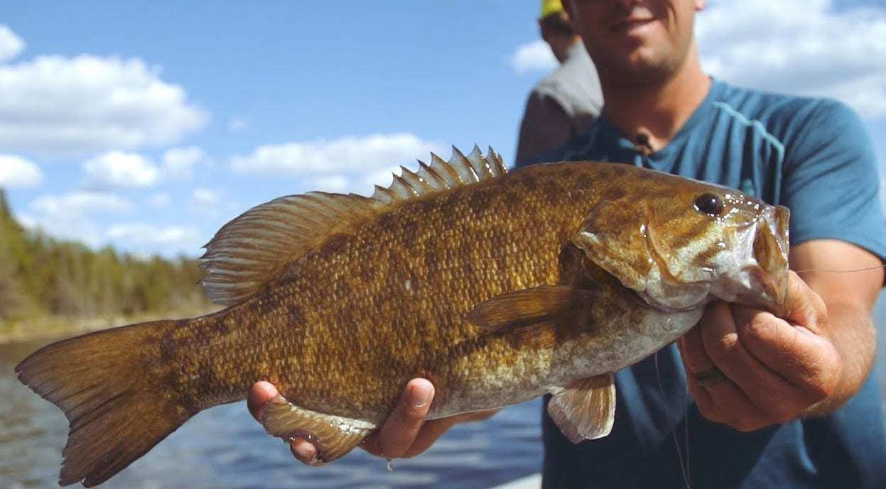 Manitoba Drive-To Fishing Hot Spot – Q Lake Lodge
