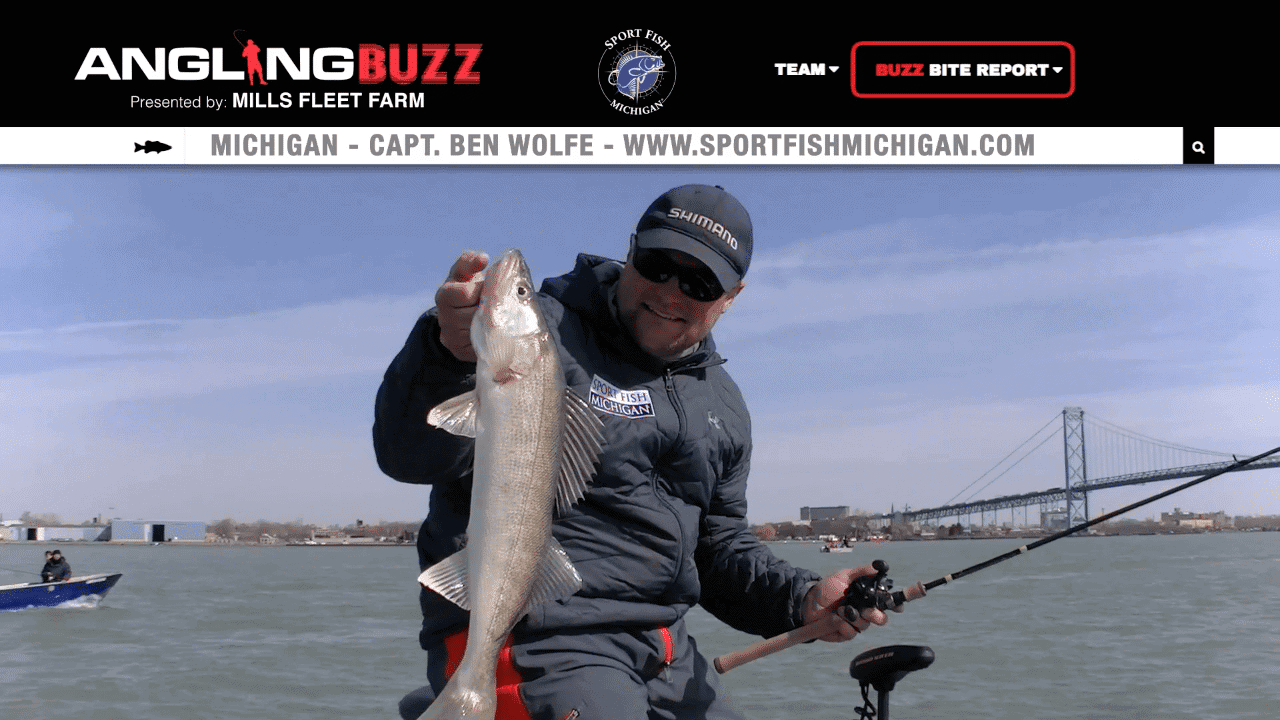 Michigan Fishing Report – Capt. Ben Wolfe
