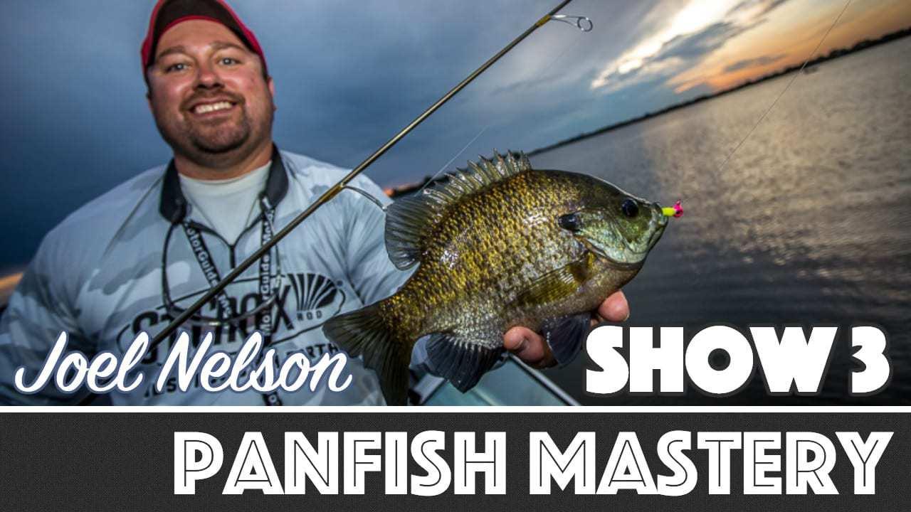 Panfish Mastery — AnglingBuzz TV