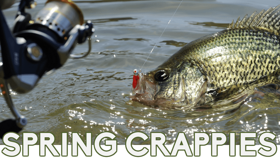Spring Crappies: Key Locations & Strategies