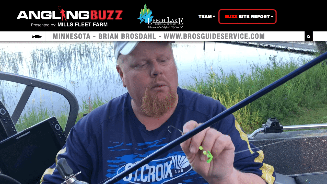 Leech Lake (MN) Fishing Report – Brian Brosdahl