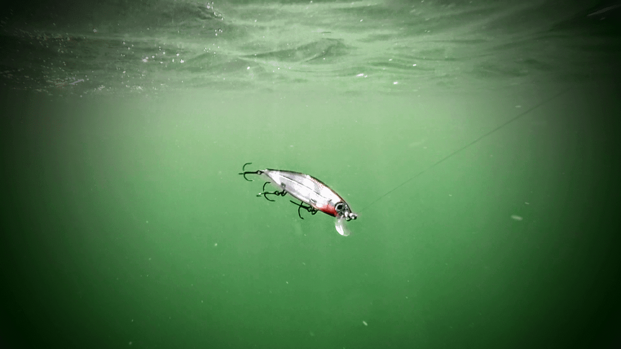 The Most Important Factor For Catching More Fish
