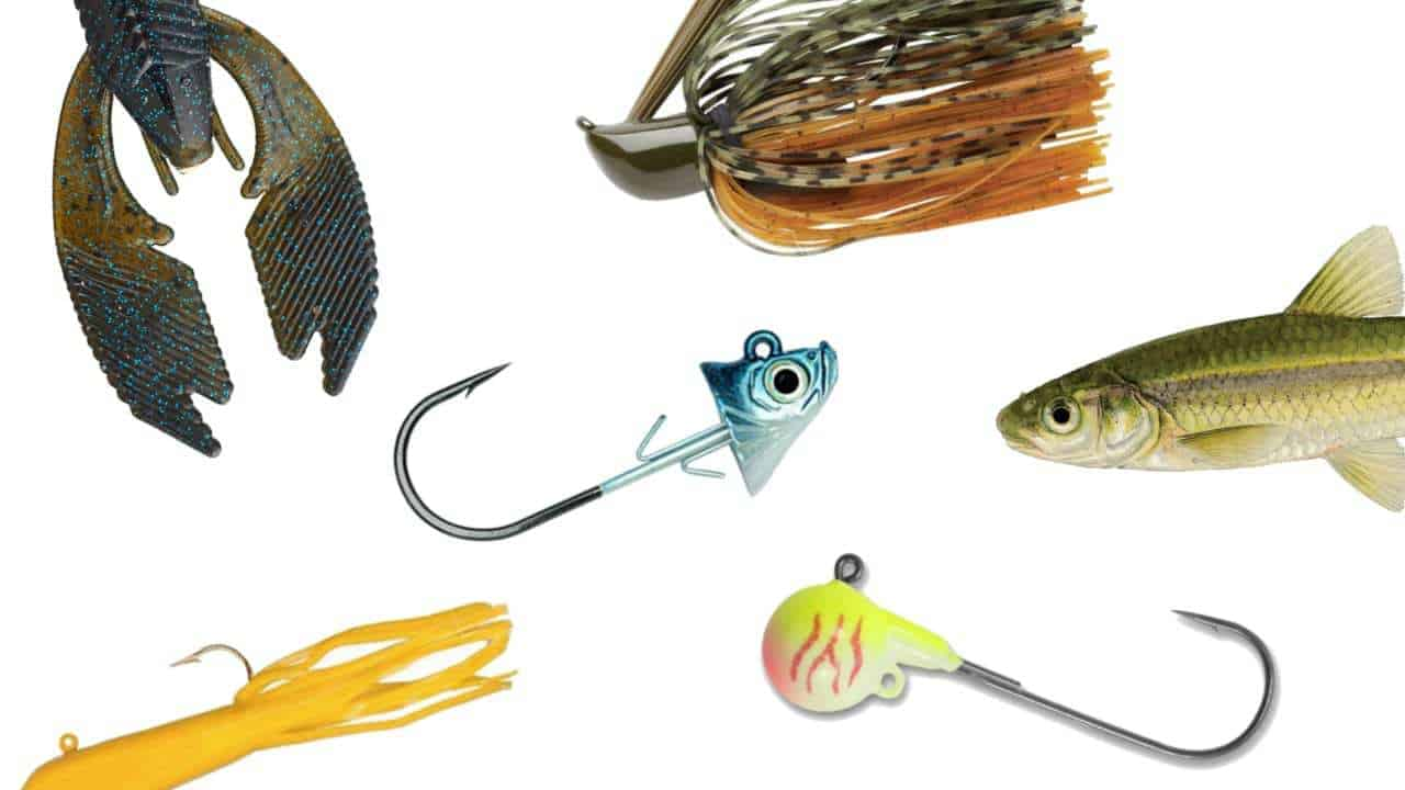Jig Fishing Tips (3 Tips from 3 Pros)