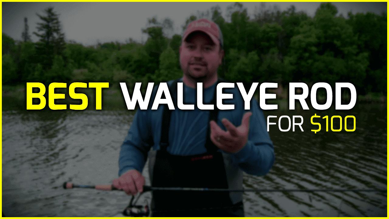 Best Walleye Rod for $100