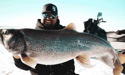 Super-Sized Lake Trout on Manitoba's Athapap