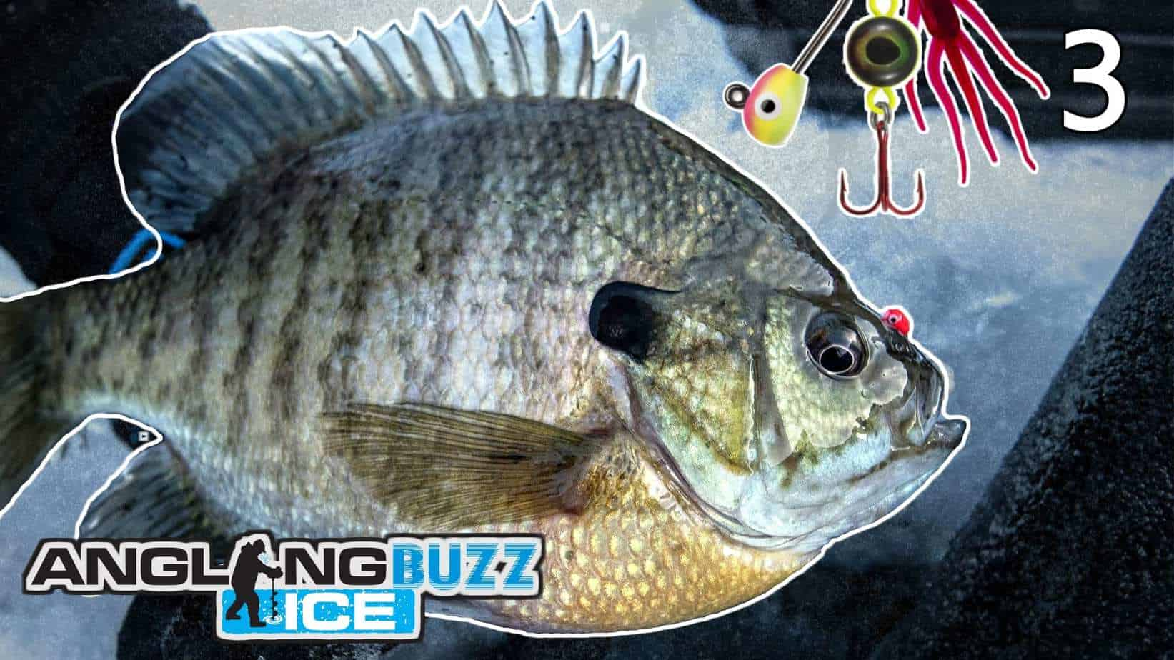 Ice Fishing Panfish – AnglingBuzz ICE