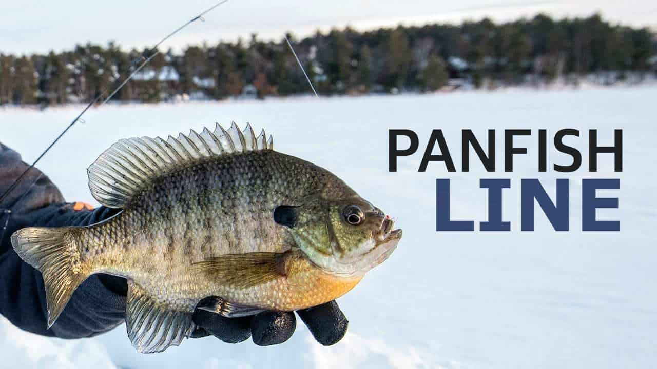 Panfish Line for Ice Fishing