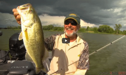 Match Lure Styles to Bass Position in Weeds