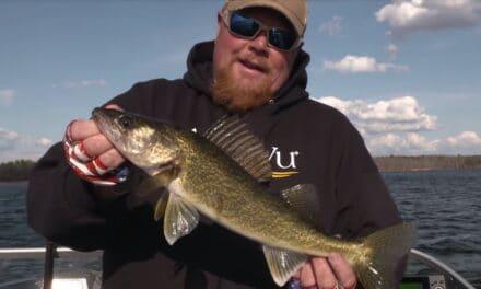 Leech Lake Spring Fishing Report for Walleye & Panfish