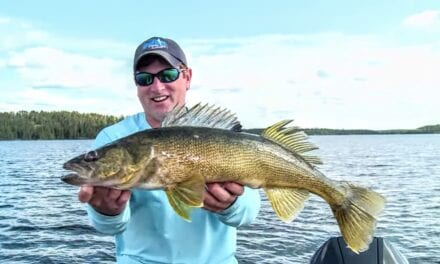 Walleye Search Baits and Gear for Summer Fishing