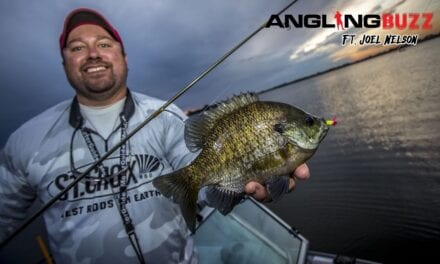 Summer Panfish Bonanza – AnglingBuzz TV