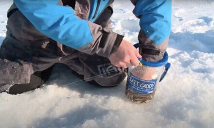 Live Bait Management Tips on Ice: Bait Caddy