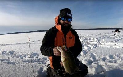 Brainerd Lakes Area Buzz Bite Report 1-12-13